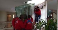 Переезд большого аквариума